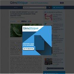GENETHIQUE 17/05/17 OGM cachés devant la CJUE : les acteurs divisés devraient être bientôt fixés