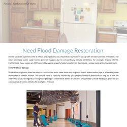 Action 1 Restoration Of Idaho