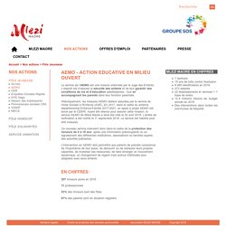 AEMO - Action Educative en Milieu ouvert
