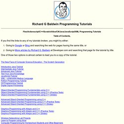 Flex/ActionScript/C++/Scratch/Alice/C#/Java/JavaScript/XML Programming, by Richard G Baldwin