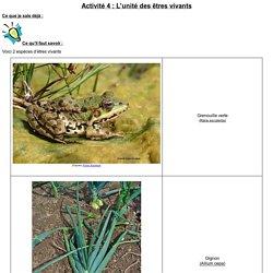 TP Cellule unité structural du vivant (2nd)