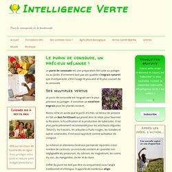 Le purin de consoude: un activateur de compost et un insecticide naturel