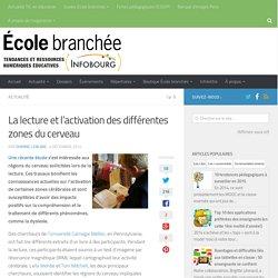 La lecture et l'activation des différentes zones du cerveau