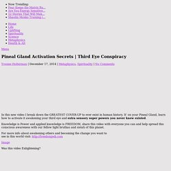 Pineal Gland Activation Secrets