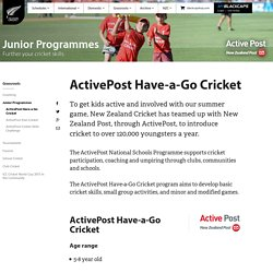ActivePost Have-a-Go Cricket