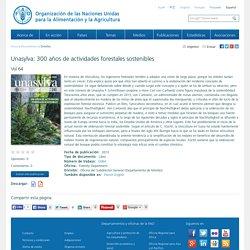 Unasylva: 300 años de actividades forestales sostenibles
