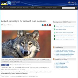 Activist campaigns for anti-wolf hunt measures