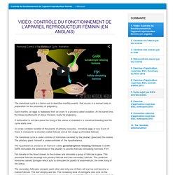 contrôle appareil sexuel féminin