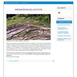 Etude de cas sur la riziculture