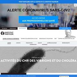 PASTEUR 14/02/20 Vibrions et choléra - Activités du CNR des Vibrions et du Choléra