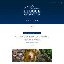 Activités à faire avec son chien dans les Laurentides?