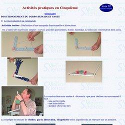 activités pratiques 5eme (a)