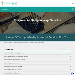 Enzyme Activity Assay Service - Microbe
