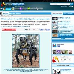 AlphaDog, le robot-mulet bientôt testé par les Marines américains