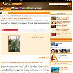 Hiver : 7 astuces pour protéger son jardin