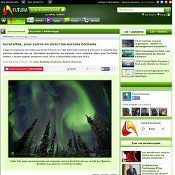 AuroraMax, pour suivre en direct les aurores boréales