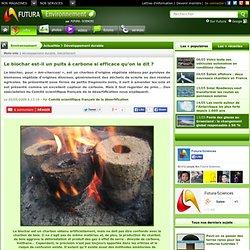 Le biochar est-il un puits à carbone si efficace qu'on le dit ?