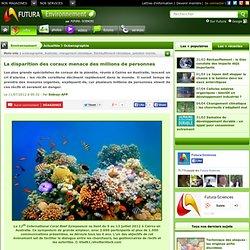 La disparition des coraux menace des millions de personnes