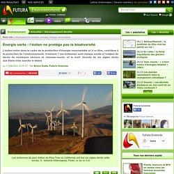 Énergie verte : l'éolien ne protège pas la biodiversité