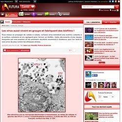 Les virus fabriquent des biofilms