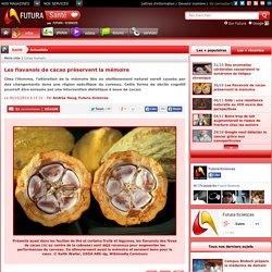 Les flavanols de cacao préservent la mémoire