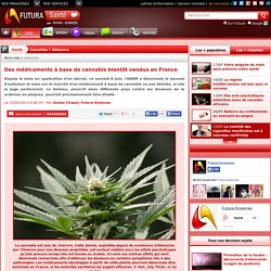 Des médicaments à base de cannabis bientôt vendus en France