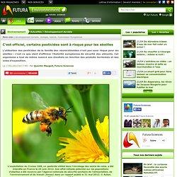 C'est officiel, certains pesticides sont à risque pour les abeilles
