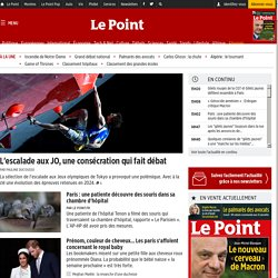 The Point - News Politics, World, France, Economy, High-Tech, Culture