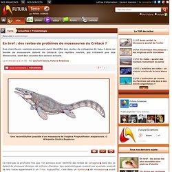 En bref : des restes de protéines de mosasaures du Crétacé ?