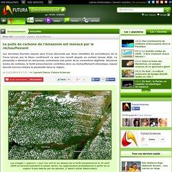 Le puits de carbone de l'Amazonie est menacé par le réchauffement