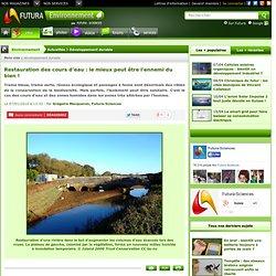 Restauration des cours d'eau : le mieux peut être l'