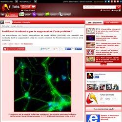 Améliorer la mémoire par la suppression d'une protéine ?