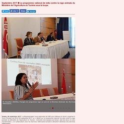 Améliorer le plan national de lutte contre la rage en Tunisie