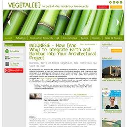 INDONESIE - Comment et pourquoi associer bambou, terre et fibres végétales -30/11/17