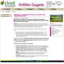 CIRAD 14/10/13 AGRODOM, le magazine TV de la ruralité et de l'agroalimentaire