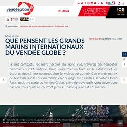 QUEL PUBLIC POUR LE VENDEE GLOBE ? Que pensent les grands marins internationaux du Vendée Globe ?