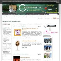 Actualités sur l'oenotourisme en Bourgogne - Divine Comédie
