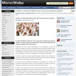Actualités du Maroc Volailles: La région Fès-Meknès assure 35% de la production nationale