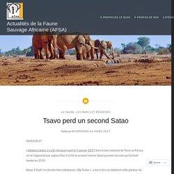 Tsavo perd un second Satao – Actualités de la Faune Sauvage Africaine (AFSA)