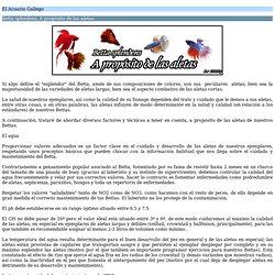 El Acuario Gallego - Betta splendens, A propósito de las aletas.