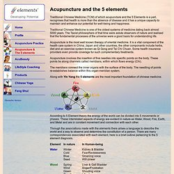 Acupuncture & the 5 elements - Practice L. Spring-Taylor, Bern