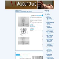 Acupuncture Points Database - Du Channel