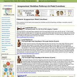 Chinese Acupuncture Meridian Pathways and Point Locations