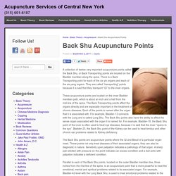 Back Shu Acupuncture Points - Acupuncture Services of Central New York