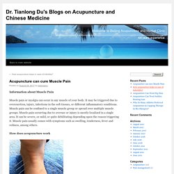 Acupuncture can cure Muscle Pain