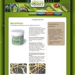 AdaliaSquare, le site web d'Adavalue - Producteur et distributeur de coccinelle Adalia bipunctata - Mycorhizes - Des champignons symbiotiques pour une végétation plus forte
