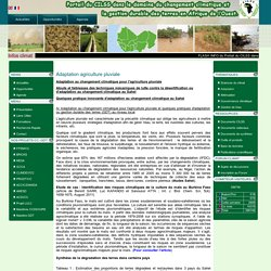 Adaptation agriculture pluviale