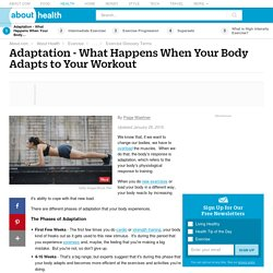 Adaptation - The Definition of the Fitness Term Adaptation