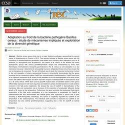 Université d'Avignon - 2014 - Thèse en ligne : Adaptation au froid de la bactérie pathogène Bacillus cereus : étude de mécanismes impliqués et exploitation de la diversité génétique