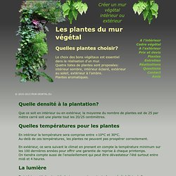 Les plantes adaptées pour un mur végétal (intérieur et extérieur)
